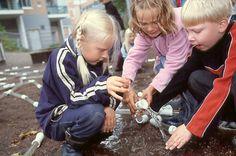 Dünyanın En Şaşırtıcı Eğitim Sistemi: Finlandiya