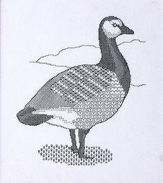 L'oie sauvage - 680628
