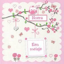 Afbeeldingsresultaat voor gefeliciteerd met jullie dochter New Baby Wishes, New Baby Products, Birth, Congratulations, Frame, Friends, Carnival, Bebe, Gift