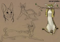 || CHARACTER DESIGN REFERENCES | Find more at…