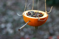 GOOD DEED for the birds! - DIY Homemade bird feeder from pumpkin - from 52 Good Deeds for the Earth and my Community | OnePartSunshine.com