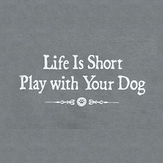and your dog's life is even shorter. :(