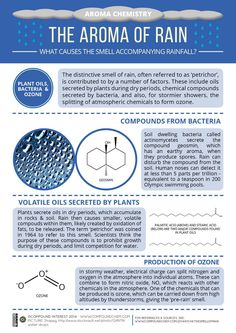 Aroma Chemistry - Smell of Rain . Love the smell of rain! Teaching Chemistry, Science Chemistry, Science Facts, Organic Chemistry, Earth Science, Science And Nature, Science Experiments, Chemistry Humor, Pseudo Science
