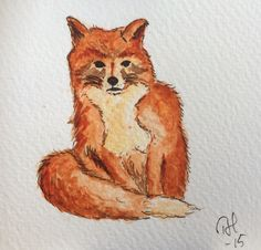 Räv // Fox