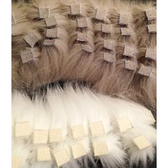 Next year's Fur Vision samples in the making.