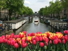 Historic Boat Tour Amsterdam: charming canal boat Delphine! Balade en bateau historique Amsterdam