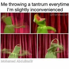 kermit tantrum