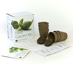 Geschenkbox Kit Kräutergartensaatgut - 6 verschiedene Kräuter zum Züchten - Ein tolles Geschenk: Amazon.de: Garten