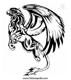 Griffin Tattoo Design For Young : Griffin Tattoos Tribal Tattoos, Cool Tattoos, Tatoos, Tribal Drawings, Fantasy Creatures, Mythical Creatures, Griffon Tattoo, Greif Tattoo, Stencil Animal