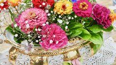 Interieur Hollandse Tulpen : Best interior flowers interieur bloemen images on