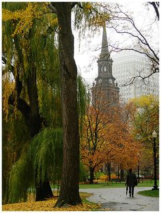 Boston Public Garden, in October...a photo from Massachusetts, Northeast | TrekEarth