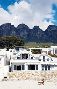 beach bungalows in cape town, south africa. South Africa Beach, Cape Town South Africa, Namibia, Beach Bungalows, Most Beautiful Cities, House Beautiful, Pretoria, Oh The Places You'll Go, Around The Worlds