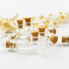Marrywindix 50 Pcs 1ml-extra Mini Tiny Clear Glass Jars Bottles with Cork Stoppers for DIY, Arts and Crafts, Projects, Decoration, Party Favors * Click image for more details.