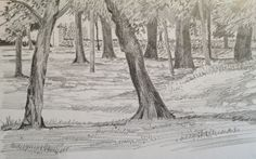 August, summer Sunday afternoon in Abington Park August Summer, Sunday, Park, Drawings, Illustration, Painting, Outdoor, Domingo, Sketches