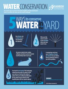 An infographic about 5 ways to conserve water in your yard Water Saving Tips, Water Facts, Water Scarcity, Water And Sanitation, Gallon Of Water, Water Hose, Water Resources, Thing 1, Eco Friendly House
