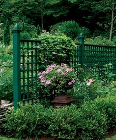 [Breaking up an area makes it feel larger. A simple lattice fence turns one area into two, giving visitors more area to explore.]   Dark green lattice fencing - cool!