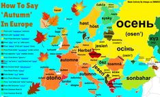 How To Say 'Autumn' In Many European Languages, With Etymology More word maps >> European Languages, World Languages, Word Map, World Geography, Ukrainian Art, Grammar And Vocabulary, More Words, Spanish Lessons, Happy Fall