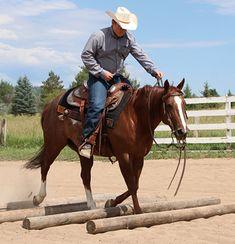 Ranch Horse Riding Fundamentals – Part 2 Horseback Riding Tips, Horse Riding Tips, Horse Tips, Horses And Dogs, Show Horses, Ranch Riding, Horse Magazine, Horse Ranch, Horse Training