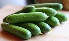 Il cetriolo appartiene alla famiglia delle cucurbitacee, la stessa dell'anguria, della zucchina e della zucca. [Leggi Tutto...]