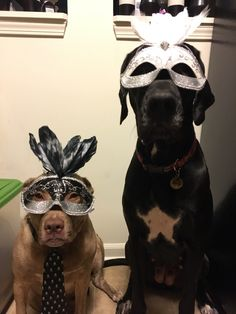 Silly Hats 78: The Grand Masquerade!