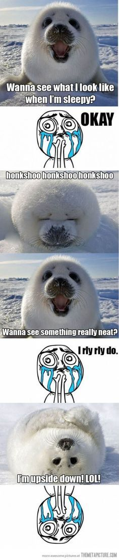 Aw... I can't... I just... Oh my... TAHT ADORABLENESS.