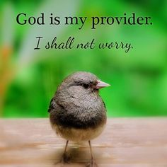 God is my provider. I shall not worry.