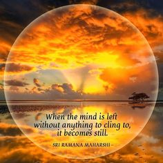 When the mind is left without anything to cling to, it becomes still. ~ Sri…