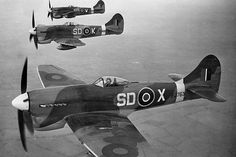Hawker Tempests, 501 Squadron: - BFD