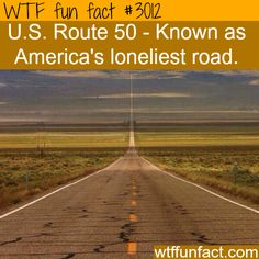 WTF Fun Facts is updated daily with interesting & funny random facts. We post about health, celebs/people, places, animals, history information and much more. New facts all day - every day! Wtf Fun Facts, True Facts, Funny Facts, Random Facts, Crazy Facts, Random Stuff, Funny Memes, The More You Know, Did You Know