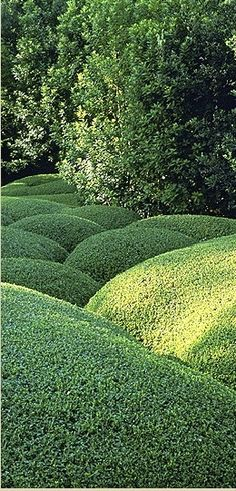 Love Fernando Caruncho's work- landscape architect who is based north of Madrid.