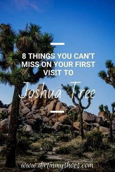 There are so many great things to do in Joshua Tree! Camping, hiking, and wildlife spotting are some of my favorite things to do in the park. If you are planning a vacation, check out my favorite things to see and do on this list of things you can't miss on your next trip to Joshua Tree National Park. Places In California, California National Parks, Tree Camping, Joshua Tree National Park, Best Hikes, Greatest Adventure, Dream Vacations, Monuments, Trip Planning