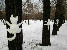 OH my... this is the BEST!! :D Cats, Cats, Cats! #snow