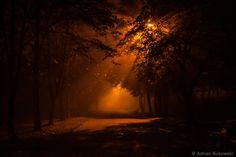 A little anxious when it's dark... by AdrianBukowski.deviantart.com on @DeviantArt