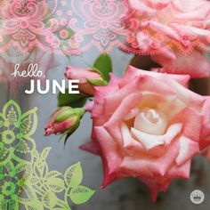 Hello June Quotes And Sayings - July 2019 Calendar Printable Editable PDF Word Page Excel Blank Templates & Holidays Days And Months, Months In A Year, Summer Months, Seasons Months, Birthday Month, Girl Birthday, Birthday Wishes, June Flower, January Quotes