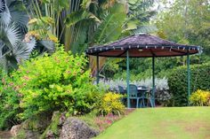 The Sanctuary Cafe is a neat place for a coffee, breakfast or lunch in an amazing setting overlooking the mangroves.