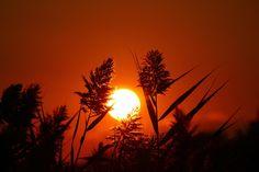 Sunset 1 by Joe Matzerath on 500px