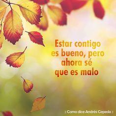 Este mensaje fue compartido vía Andrés Cepeda Movies, Movie Posters, Messages, Lyrics, Places, Films, Film Poster, Cinema, Movie