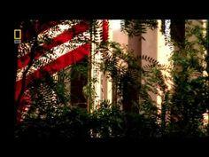 ▶ Inside the Mafia - The truth about Italian Mafia episode 1 (HD) - YouTube