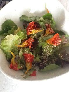 Chagas na salada