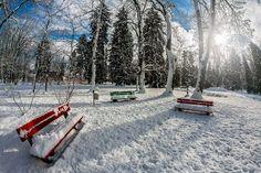 Vlado Lukáč 4_nov.2017 Snow, Outdoor, Outdoors, Outdoor Life, Garden, Human Eye