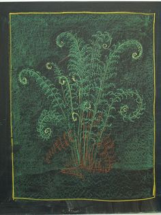Botany: Ferns