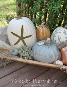 Bring a bit of the beach indoors this fall with these Cool Coastal Pumpkins!
