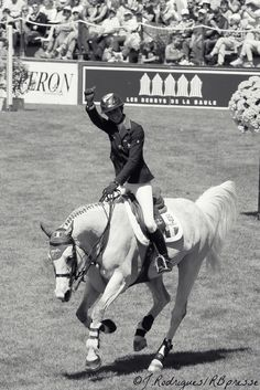 Show jumping horse and rider from France
