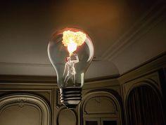 in bulb