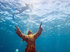 Keya diver snorkel tours