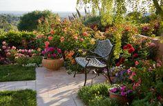 Роскошные кустовые розы: 50 изысканных садов с королевским ландшафтом (фото) http://happymodern.ru/kustovye-rozy-foto/ Благодаря своей красоте и универсальности роза впишется практически в любой ландшафтный дизайн Смотри больше http://happymodern.ru/kustovye-rozy-foto/