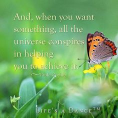 Live I harmony with the universe Words Quotes, Wise Words, Sayings, Great Quotes, Quotes To Live By, Awesome Quotes, Uplifting Quotes, Inspirational Quotes, Pep Talks
