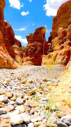 Wheretostay Namibia: Travel Planner & Routes into Namibia Easy Jet, Namibia, Travel Planner, Phuket, Solo Travel, Places To Travel, Monument Valley, Cool Pictures, Tourism