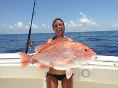 Reel Sexy Fishin ♥ ;) <°))))><| Reader Saltwater Fishing Photos | Salt Water Sportsman That's a Big Snapper