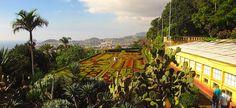 O que fazer em Funchal, na Ilha da Madeira